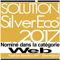 solution-silver-eco-nomination